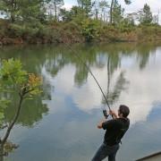 canne carp tribu (3)