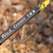 WILD FOREST (7)